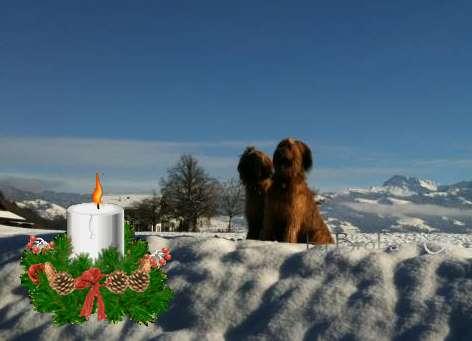 Wir wünschen allen besuchern einen schönen 1 advent